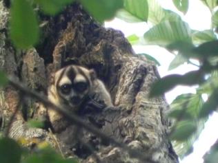 La Marly Enero 2012 140