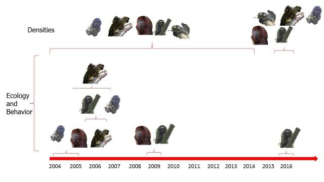Zocay Project Timeline2